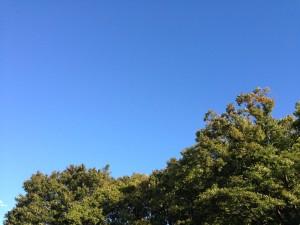 雲一つない秋晴れ